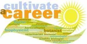 Cultivate a Career